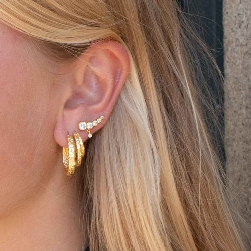 Maybe. Gold plated hoops